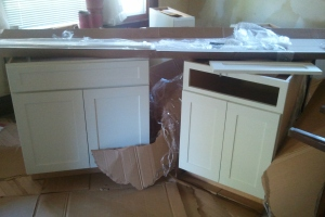 Kitchen Cabinet (the 2 good ones)