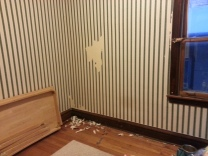 Testing the wallpaper